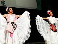 Wikimanía 2015 - Day 3 - Opening Ceremony - México DF 13.jpg