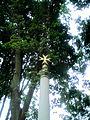 Wilanów - kolumna z krzyżem maltańskim - 3.jpg