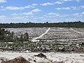 Wilbinga - cleared bushland after fire Feb 2015.jpg