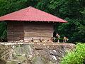 Wildpark Alte Fasanerie Klein-Auheim Mufflon Juni 2012.JPG