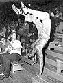 William (Bill) L. Schultz performs a handstand during a 1943 War Bond drive.jpg