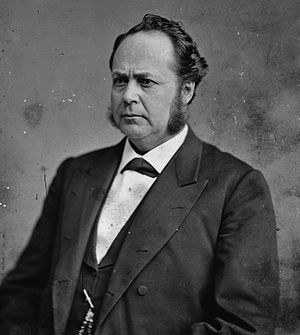 Minnesota's 1st congressional district - Image: William Windom, Brady Handy photo portrait, ca 1870 1880