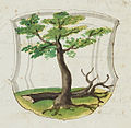 Wolleber Chorographia Mh6-1 0600 Wappen.jpg