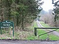 Woodland track, Park Wood - geograph.org.uk - 330411.jpg