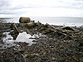 Wreckage in Port Castle Bay (1) - geograph.org.uk - 1444225.jpg