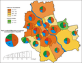 Wybory samorządowe 2010 Warszawa - rady dzielnic.PNG