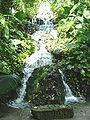 Xcaret waterfall.jpg