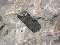 Xenolith in andesite (Tertiary; Yellowstone, Wyoming, USA) 3 (48555516117).jpg