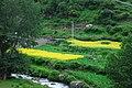 Xiaojin, Aba, Sichuan, China - panoramio (37).jpg