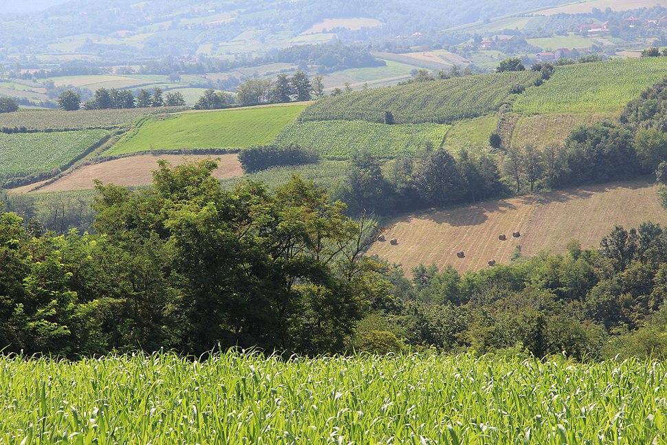 Zarube - opština Valjevo - zapadna Srbija - panorama 12
