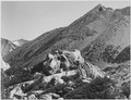 """Peak near Rac Lake, Kings River Canyon (Proposed as a national park),"" California, 1936., ca. 1936 - NARA - 519915.tif"