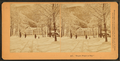 'Bright, Bright as Day.', from Robert N. Dennis collection of stereoscopic views 2.png