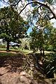 (1)Sutherland Park-1.jpg