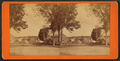 (View of) Lee, Maine, from Robert N. Dennis collection of stereoscopic views.png