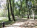 Łask, Park Miejski-004.JPG