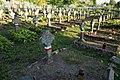 Глыбокае. Польскія пахаванні на могілках (01).jpg