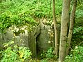 ДОТ - panoramio (8).jpg