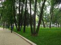 Зелёный уют - panoramio.jpg