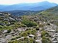 Карпатський національний природний парк.Фото.JPG