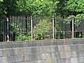 Кронштадт. Ограда Обводного канала2.jpg
