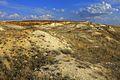 На вершине холма - panoramio.jpg
