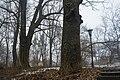 Парк аграрного технікуму, м. Полтава - 2016-02-15 015.jpg