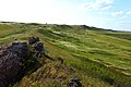 Урочище Синие Камни. Вид в северо-западном направлении - panoramio.jpg