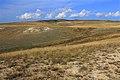 Урочище Утиная гора - panoramio - Сергей Метик.jpg