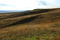 Урочище Утиная гора 8 - panoramio.jpg