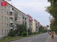 Центральная улица Ломоносова.jpg