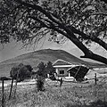 כפר תבור - לרגלי הר תבור-JNF010611.jpeg