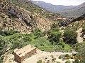 حول جربة البن وما جاورها وادي صيحنات جبل اعمور بواسطة علي عباس حميد - panoramio.jpg