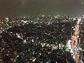 六本木ヒルズ大展望台 東京シティビュー - panoramio (44).jpg