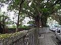 昆陽街 Kunyang Street - panoramio.jpg