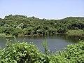 水塘 - panoramio.jpg
