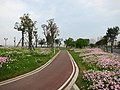 江滨绿道 - Riverside Greenway - 2016.04 - panoramio.jpg