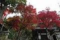 知恩院 Chion-in (11152843803).jpg