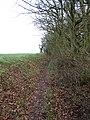 -2019-12-06 Paston way, Fox hills woods, Northrepps, Norfolk.JPG