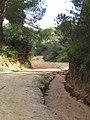 10-12-2016, Access road down to Praia do Barranco das Belharucas, Olhos de Água (5).JPG