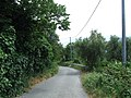 17100 Savona, Province of Savona, Italy - panoramio.jpg