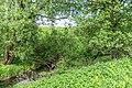 1 Остепненные склоны и балочные леса по правому берегу долины р. Осетрик.jpg