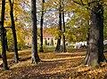 20051026065DR Kleinwolmsdorf (Arnsdorf) Rittergut Herrenhaus.jpg