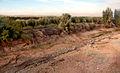 2008 - Marocko - vägen från Marrakech till Agadir 11.JPG