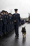 20110425 AK v1023933 0013 - Flickr - NZ Defence Force.jpg