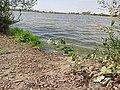 2015.09.05 13.44.22 DSC00347 - Flickr - andrey zharkikh.jpg