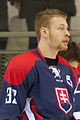 20150207 1756 Ice Hockey AUT SVK 9492.jpg