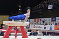 2015 European Artistic Gymnastics Championships - Pommel horse - Robert Seligman 08.jpg