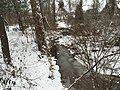 2016-02-15 08 37 44 View west down a snowy Cain Branch of Cub Run in the Armfield Farm section of Chantilly, Fairfax County, Virginia.jpg
