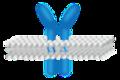 201601 Receptor.png