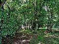 20160611 1450 niechlod park s36-mc-a.jpg